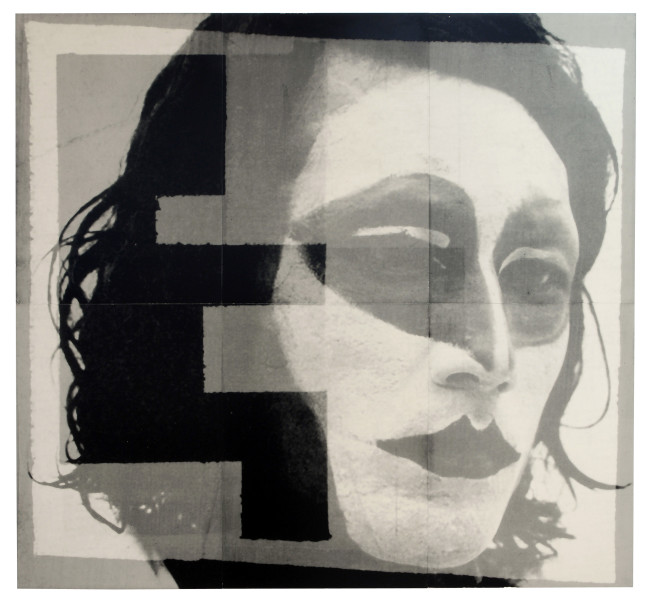 David Noonan Untitled, 2006; from the series Exhibited in 'Stolen Ritual', 2006; screen print on laminated birch plywood; 6 panels: 188 x 200cm, unique print; enquire