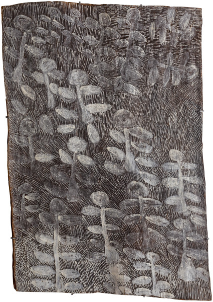 Nyapanyapa Yunupingu untitled, 2018; 1304-18; natural earth pigments on bark; 100 x 69 cm; enquire