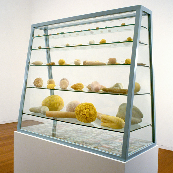 Fiona Hall Cash Crop, 1998-99; carved soap, painted banknotes, vitrine; 115 x 130 x 55 cm; vitrine dimensions; enquire