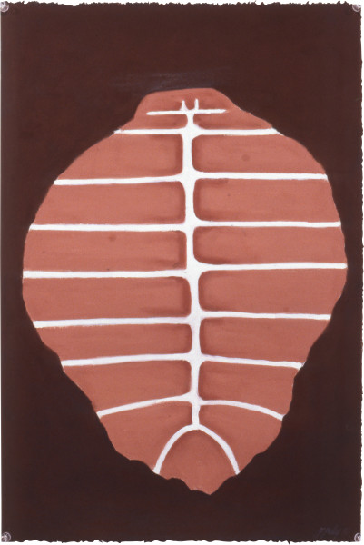 Fiona Foley Turtle Shell, 1992; pastel on paper; 56 x 38 cm; enquire
