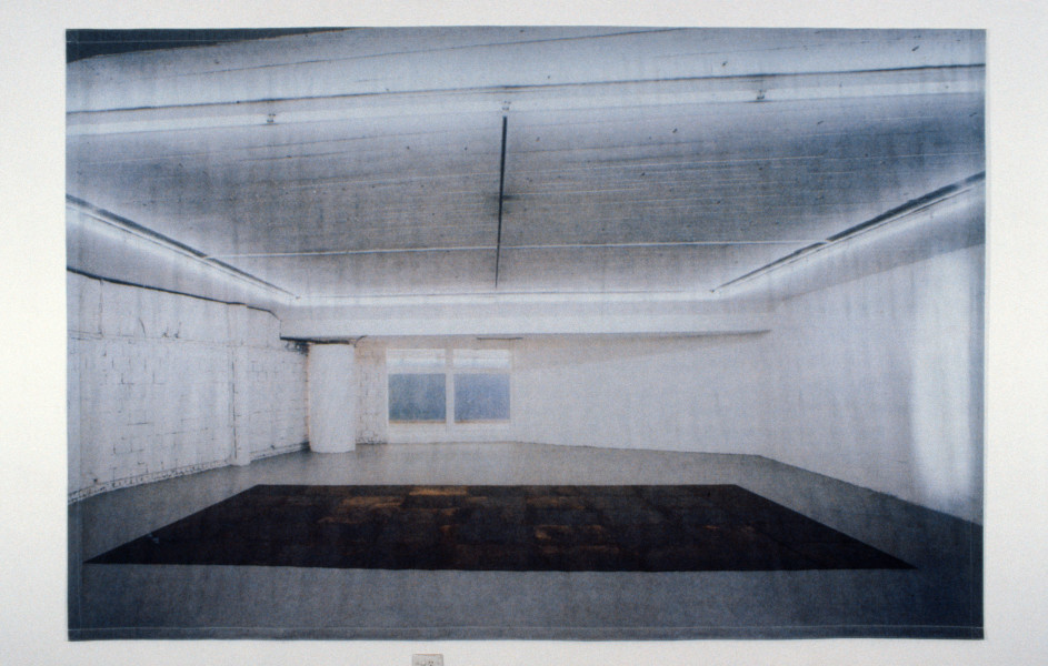Imants Tillers Erased Polke, 1990; photomechanical reproduction, acrylic on canvas; 253 x 376 cm; enquire