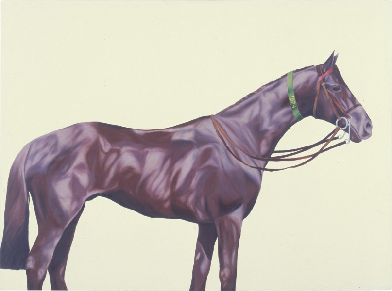 Jenny Watson Horse Series No.6: With Single Green Ribbon, 1973-74; oil and acrylic on canvas; 183 x 247 cm; enquire