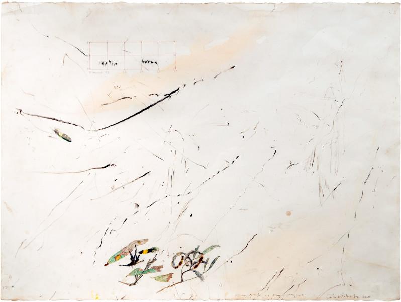 John Wolseley Senna/Slaty-Backed Thornbill, 2005; watercolour, graphite, cabronised wood on paper; 66 x 85.5 cm; enquire