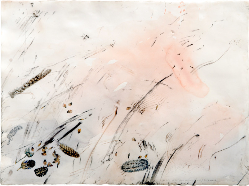 John Wolseley Minni Ritchi/Singing Honeyeater, 2005; watercolour, graphite, carbonised wood on paper; 66 x 85.5 cm; (frame size); enquire