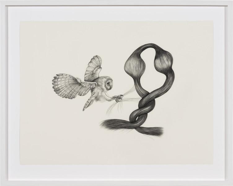 Patricia Piccinini Inseparable (Barn Owl), 2020; graphite on paper; 57 x 76 cm; 72.5 x 91 cm (framed); enquire