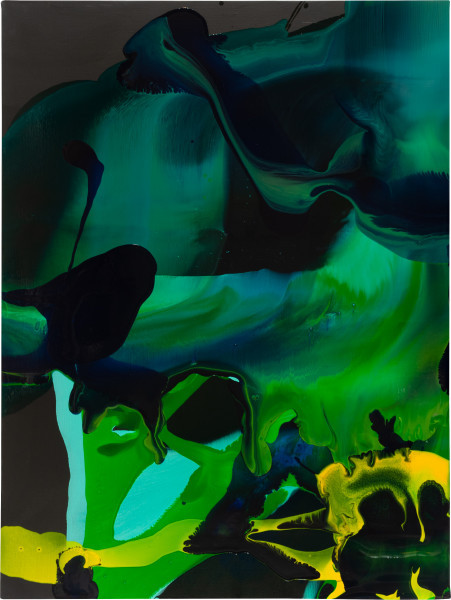 Dale Frank 26. Some sort of parrot or two hit the grill., 2009; varnish and acrylic on canvas; 160 x 120 cm; enquire
