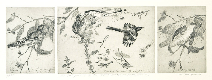 John Wolseley Last journey of the Regent Honeyeater, 2005; Etching; 17.5 x 52 cm; Edition of 25 + AP 2; enquire