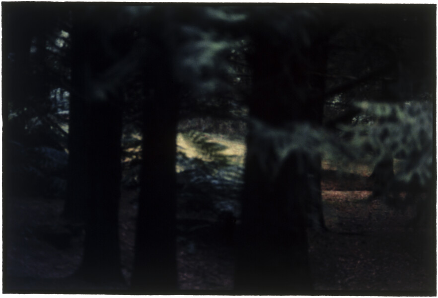 Bill Henson Untitled #50, 1996-97; CL SH134 N10A; Type C photograph; 127 x 180 cm; (paper size); Edition of 5 + AP 2; enquire