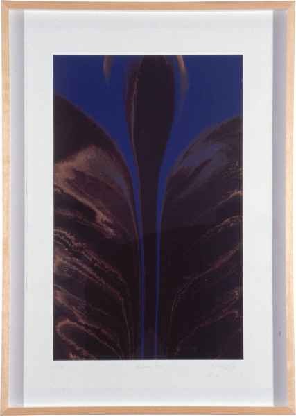 Nicholas May Anabatic Print, 1992; ten colour screen print with high gloss varnish paper size; paper size 88.5 x 60 cm; image size 75 x 47 cm; Edition of 65; enquire