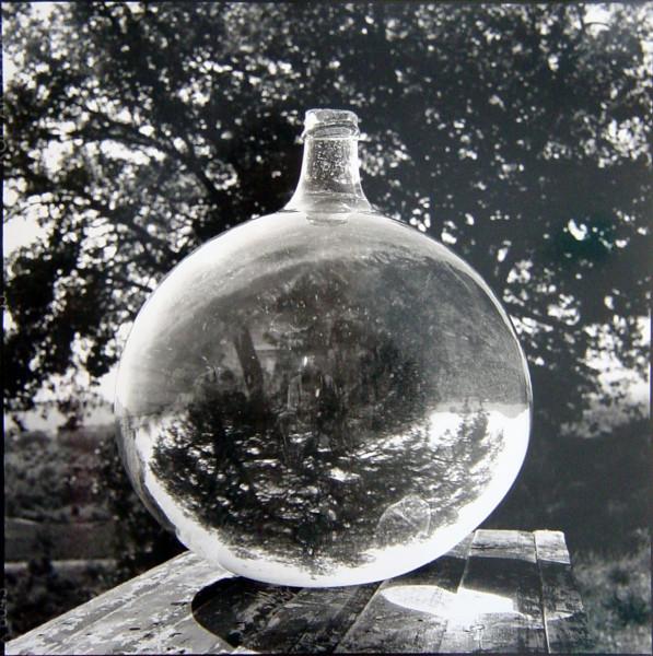 Bill Culbert Wine Bonbonne with Oak Tree, France, 2002; silver gelatin prints; 40.5 x 40.5 cm; Edition of 25; enquire