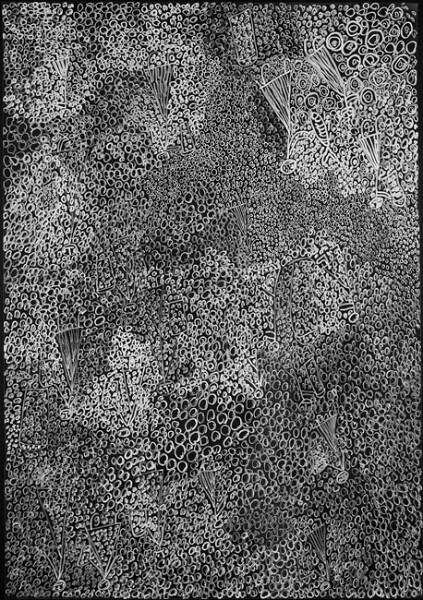 Nyapanyapa Yunupingu Birrka'mirri (26), 2012; 4303Y (AC. 5.3); paint pen on clear acetate plastic; 83.5 x 59.5 cm; enquire