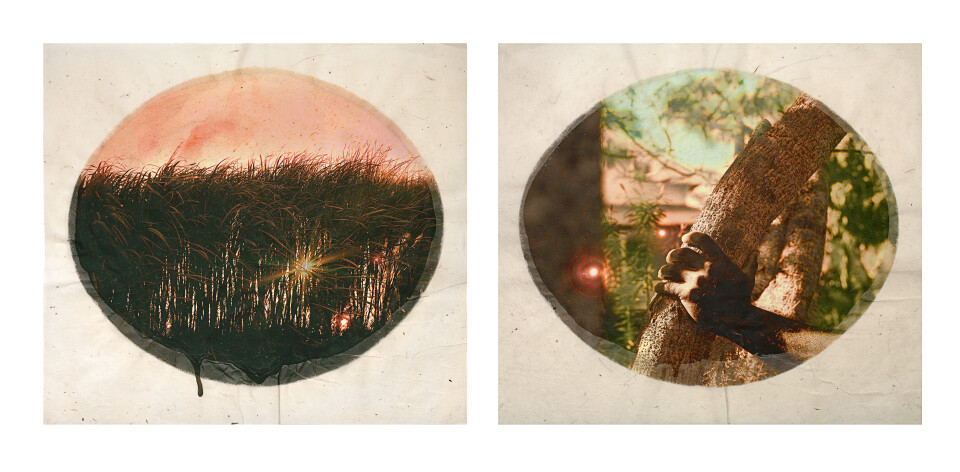 Tracey Moffatt Plantation (Diptych No. 4), 2009; digital print with archival pigments, InkAid, watercolour paint and archival glue on handmade Chautara Lokta paper; 46 x 50.5 cm (each); Edition of 12 + AP 2; enquire