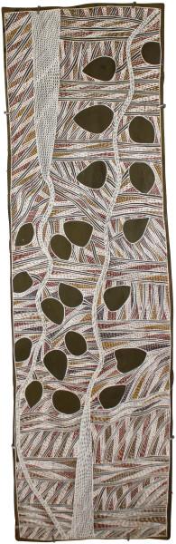 Mulkun Wirrpanda Gangurri, 2015; 4804P; Bark painting; 132 x 40 cm; enquire