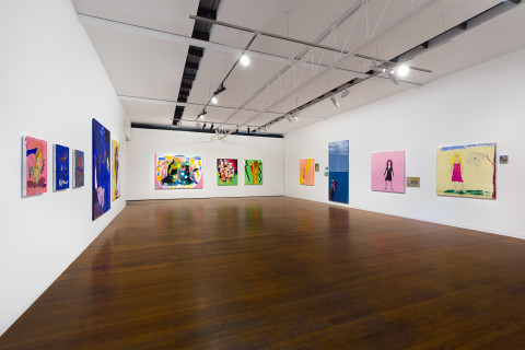 'A Painting Show' at Roslyn Oxley9 Gallery