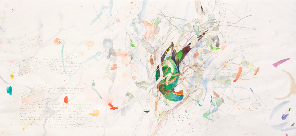 John Wolseley Swift Parrot Diary - Whipstick Forest, 2006; watercolour on paper; 61.5 x 102 cm; (frame size); enquire