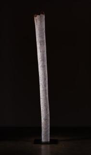 Nyapanyapa Yunupingu untitled, 2018; 98-19; natural earth pigments on hollow log; 222 x 20 x 20 cm; Enquire