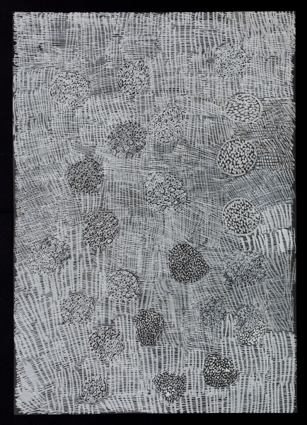 Nyapanyapa Yunupingu untitled, 2018; 5618-18; paint pen on clear acetate; 84 x 60 cm; enquire