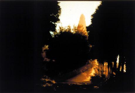 Bill Henson Untitled #75, 1998; CL SH 251 N1; Type C photograph; 104 x 154 cm; 127 x 180 cm (paper size); Edition of 5 + AP 2; enquire