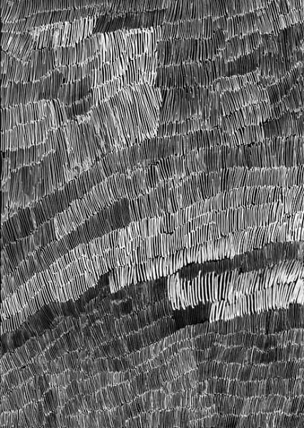 Nyapanyapa Yunupingu 34. Birrka'mirri 5, 2011; 4303O; paint pen on clear acetate plastic; 83.5 x 59.5 cm; enquire