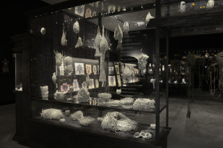 Fiona Hall Tender, 2003-05; US dollars, wire, vitrines, vinyl lettering,; vitrine dimensions: 220 x 360 x 150cm; enquire