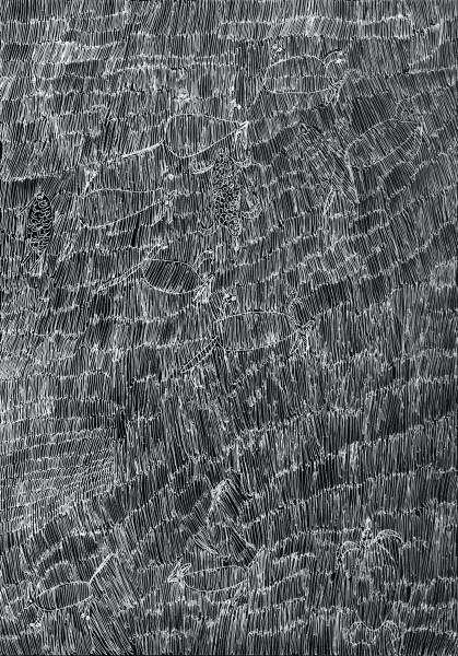 Nyapanyapa Yunupingu 38. Birrka'mirri 9, 2011; 4303P; paint pen on clear acetate plastic; 83.5 x 59.5 cm; enquire