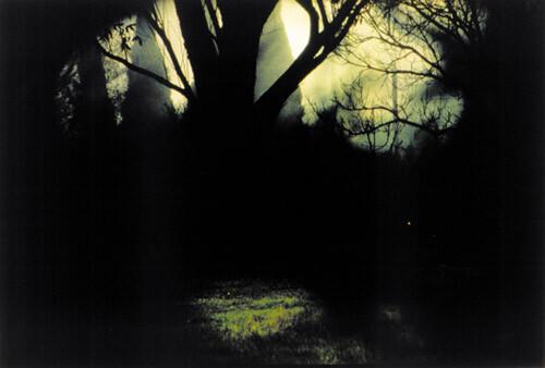 Bill Henson Untitled #88, 1998; CL SH 247 N17; Type C photograph; 104 x 154 cm; 127 x 180 cm (paper size); Edition of 5 + AP 2; enquire