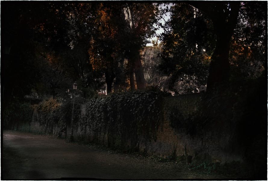 Bill Henson Untitled, 2019-20; CL SH878 N13B; archival inkjet pigment print; 127 x 180 cm; edition of 5 + 2AP; enquire