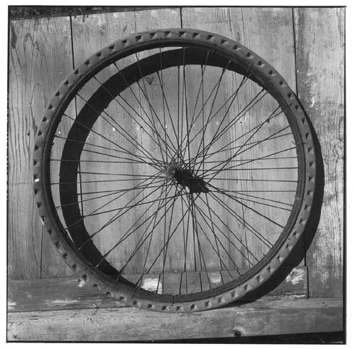 Bill Culbert Bike wheel, wired solid rubber, 2002; Edition of 25; enquire