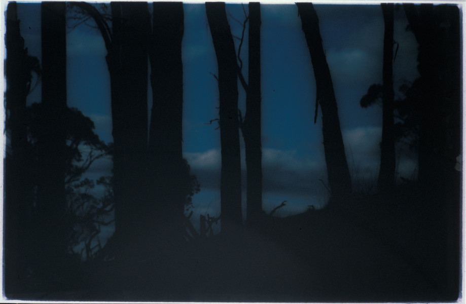 Bill Henson Untitled, 1993-94; CL SH99 N16; type C photograph; 138 x 195 cm; (framed); enquire