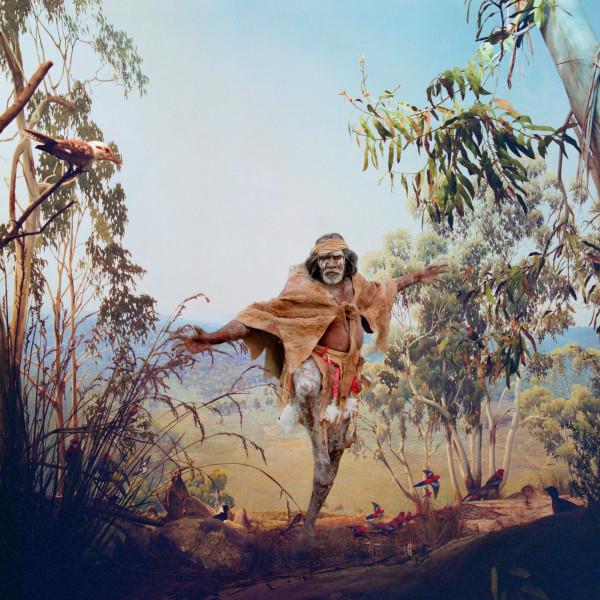 Anne Zahalka Birds of Australia , 2006; Ilfaflex Type C print; 80 x 80 cm; Edition of 10 + AP 2; enquire