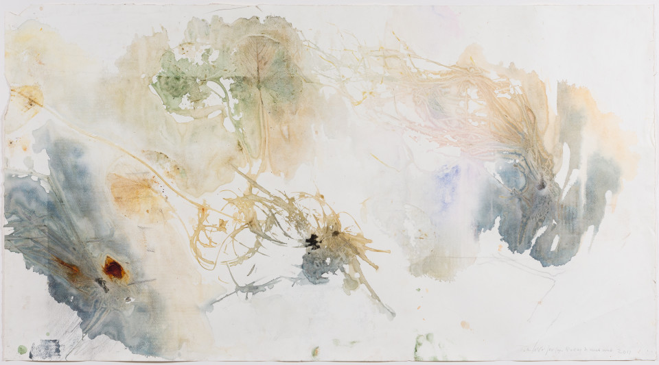 John Wolseley Räkay and Wäkwak, 2016; watercolour on paper; 75 x 128 cm; enquire