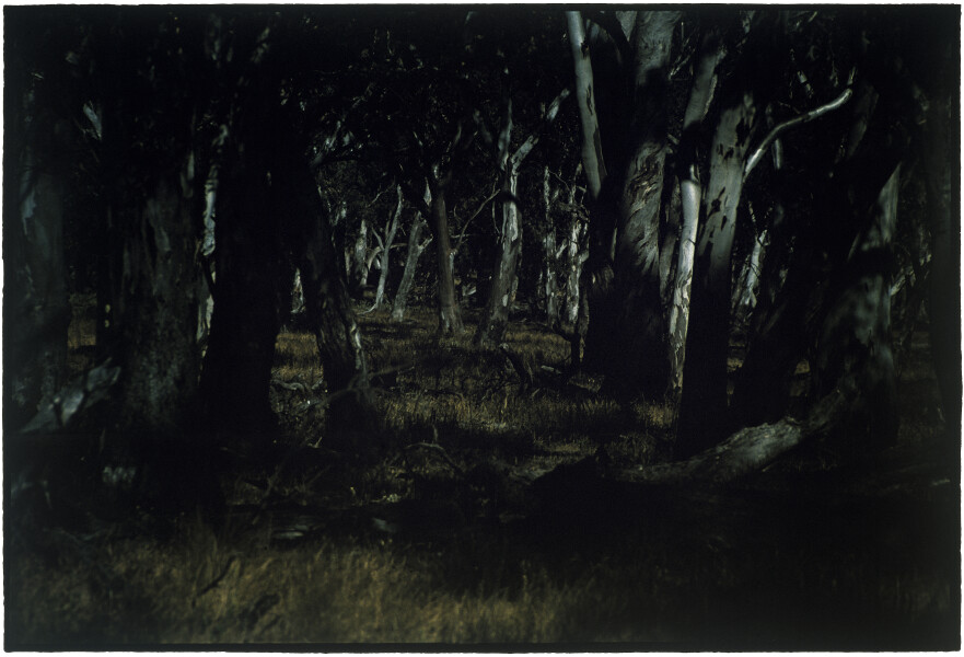 Bill Henson Untitled #94, 2001-02; CL SH456 N15; Type C photograph; 127 x 180 cm; (paper size); Edition of 5 + AP 2; enquire