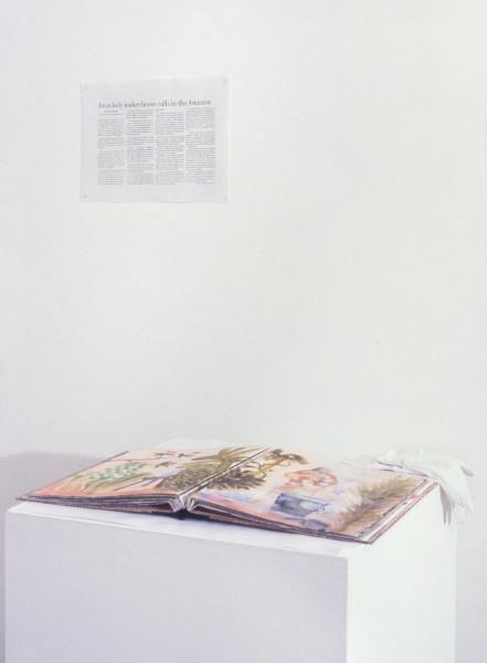 Fiona Hall & Nalini Malani The Avon Lady in the Amazon, 1998; watercolour, gouache on water colour paper; 39 x 32 cm; each page; enquire