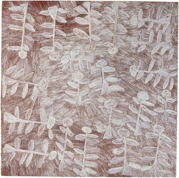 Nyapanyapa Yunupingu Dharpa, 2016; 3143-16; Painting on board; 122 x 122 cm; enquire