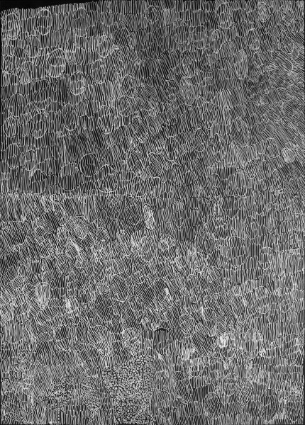 Nyapanyapa Yunupingu 50. Birrka'mirri 18, 2011; 1268-16 (Ac. 3.21); paint pen on clear acetate plastic; 83.5 x 59.5 cm; enquire