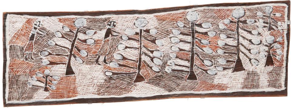 Nyapanyapa Yunupingu 7. 2 Wendys 7 Wild Apple Trees, 2009; 3511K; Natural earth pigments on bark; 42 x 124 cm; enquire