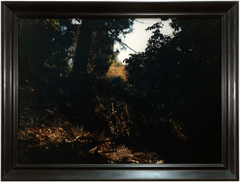 Bill Henson Untitled, 2007; CL SH596 N33; type C photograph; 124 x 174.5 cm; (image size); Edition of 5; enquire