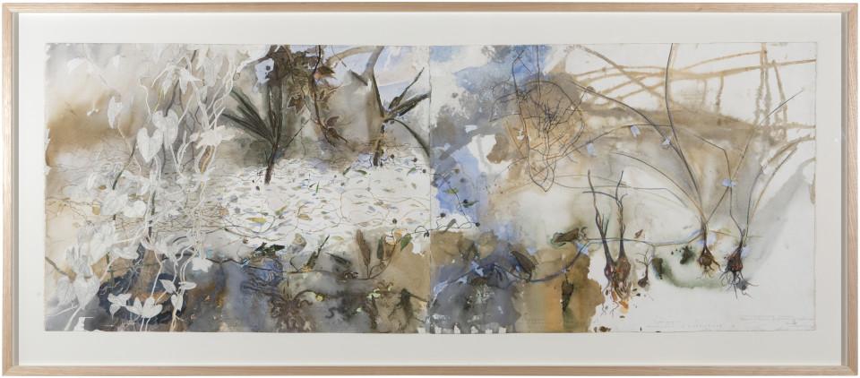 John Wolseley Ganguri, Yirri, Dhunguruk, Dirridirri, 2015; watercolour, graphite, plant leaf on paper; 97 x 221 cm; enquire