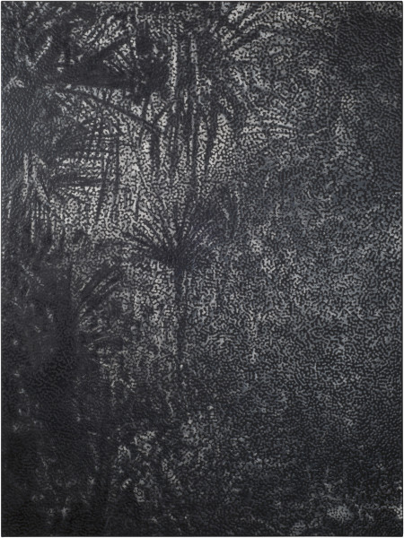 Daniel Boyd Untitled (MIPPWR), 2015; oil, charcoal and archival glue on polyester; 183 x 137.5 cm; enquire