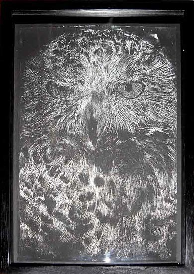 David Noonan Owl, 2003; gouache on paper; 29.5 x 21 cm; enquire