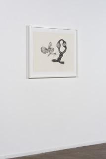 installation view; Patricia Piccinini Inseparable (Barn Owl), 2020; graphite on paper; 57 x 76 cm; 72.5 x 91 cm (framed); enquire