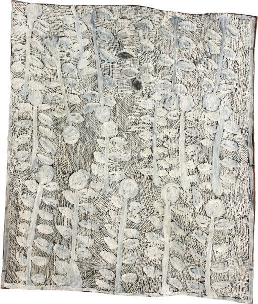 Nyapanyapa Yunupingu Trees White, 2011; 4078V; natural earth pigments on bark; 82 x 96 cm; enquire