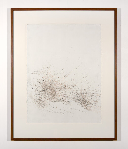 John Wolseley Burnt Scrub Trace No. I Allocasuarina, 2002; carbonised wood on paper; 77 x 57 cm; enquire