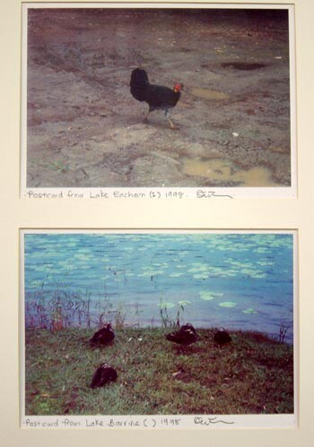 Destiny Deacon Postcard from Eacham (1),  Postcard from Lake Barrine, 1998; 2 colour laser prints; 21 x 29.7 cm; Edition of 15; enquire