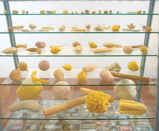 Fiona Hall Cash Crop (detail), 1998-99; carved soap, painted banknotes, vitrine; 115 x 130 x 55 cm; vitrine dimensions; enquire