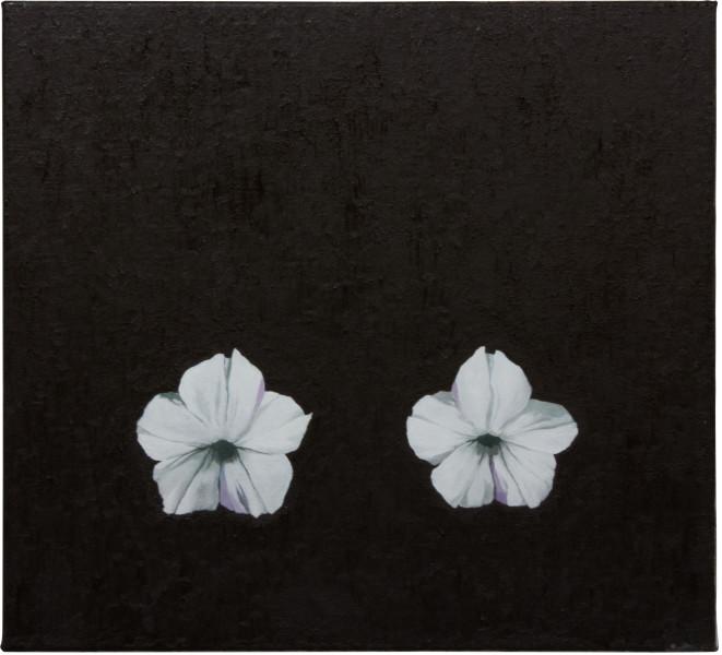 Glenn Sorensen Low Petunia, 2012; oil on linen; 40 x 44 cm; enquire