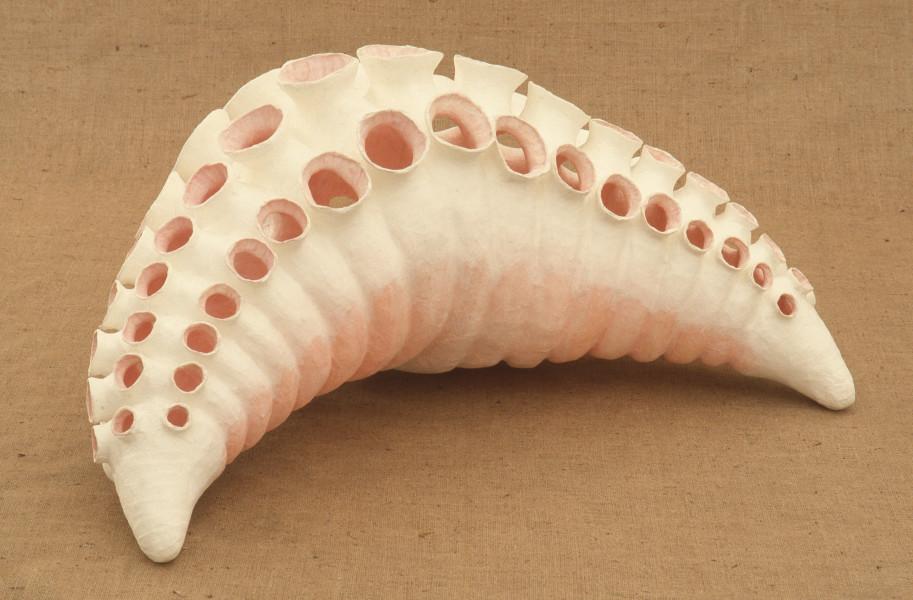 Bronwyn Oliver Mantle, 1985; Paper, fibreglass, dye; 45.7 x 101.6 x 45.7 cm; enquire