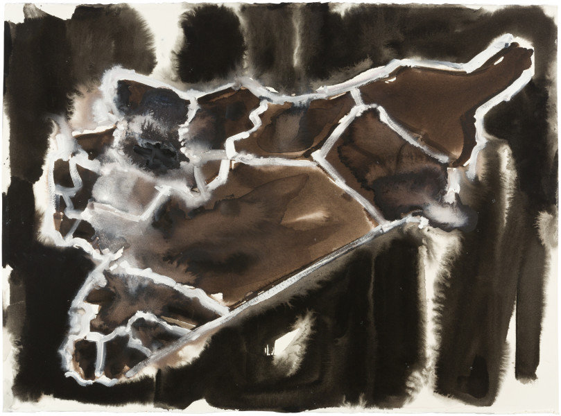 Fiona Hall Cage (Syria map 1), 2017; Cat no. 41; gouche and tapa dye on rag paper; 57 x 76 cm; enquire