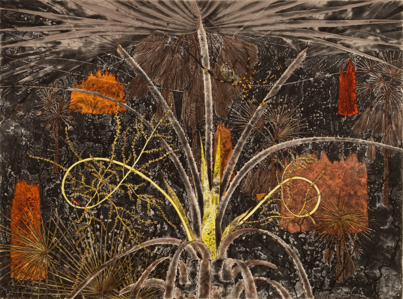 Fiona Hall Fan Palm, 2010; from the series Burning Bright; Etching on Hahnemuhle cotton rag paper; 79.5 x 94 cm; Image size: 49 x 66cm; Edition of 41 + AP 5; enquire