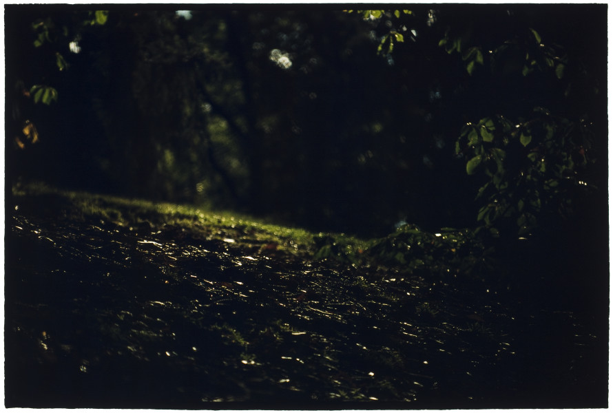 Bill Henson Untitled #25, 2007-08; CL SH597 N34; type C photograph; 127 x 180 cm; Edition of 5 + AP 2; enquire